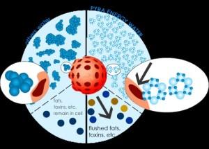 Molekul Air Tenaga Pyra